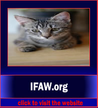 IFAW3