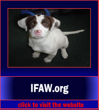 IFAW5