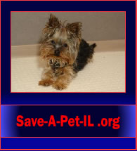 Save-A-Pet-IL