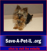 Save-A-Pet-IL5