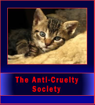 antiCrueltySociety